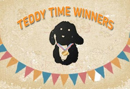 TEDDY TIME WINNERS